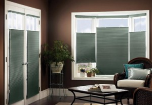 safe blinds for children and pets in Los Angeles, Upland, Rancho Cucamonga, Ontario, Fontana, Pasadena